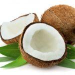 coconut_picutre.jpg