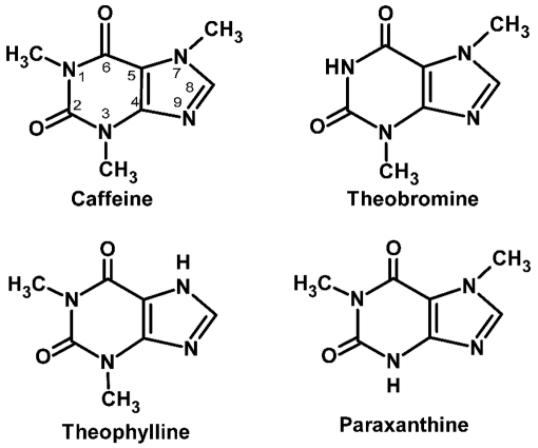 Guarana pharmacology