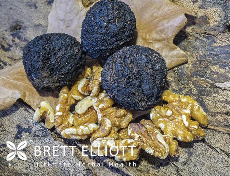 black_walnut_with_logo.jpg