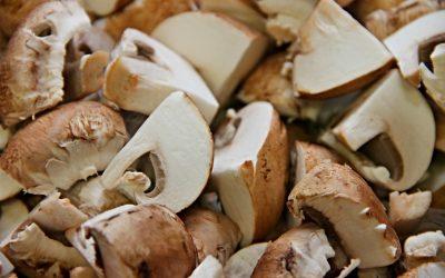 mushrooms-3209263_1920.jpg