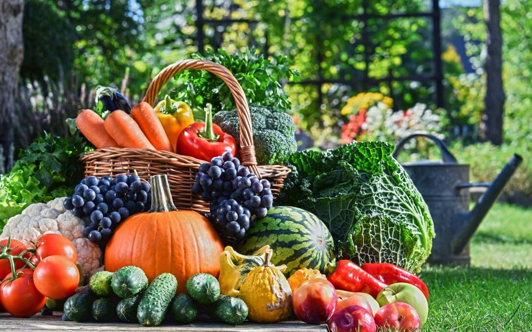 Super Vegetarian Diet