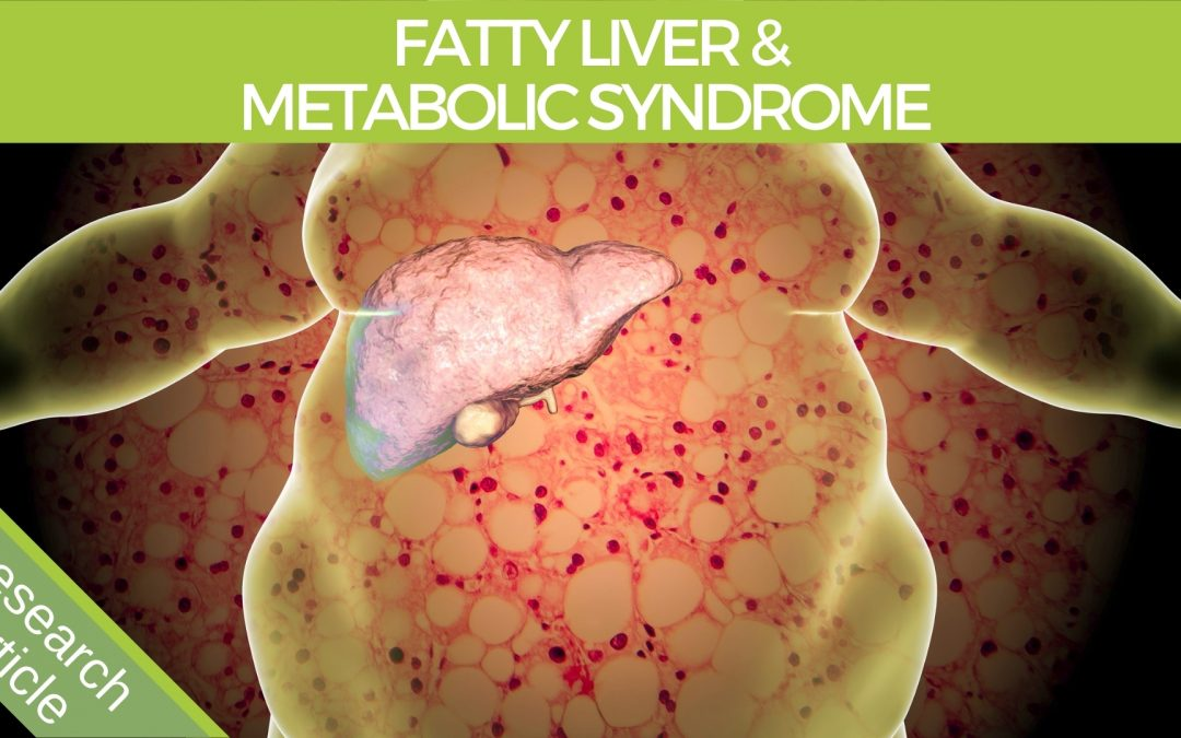 an illustration of a fatty liver and metabolic syndrome