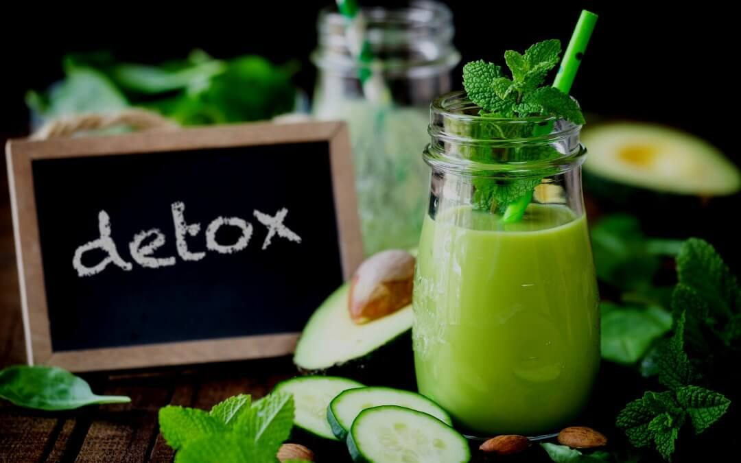 Considering Dr Gundry's Plant Paradox Lectin Free Diet?